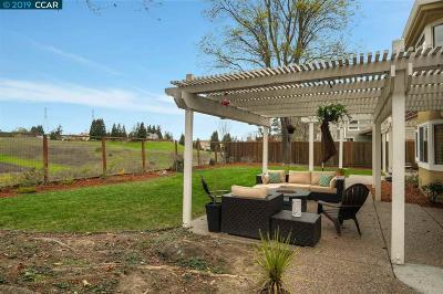 Danville Single Family Home For Sale: 91 Hillview Dr