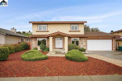 Hayward Single Family Home For Sale: 28625 Hayward Blvd