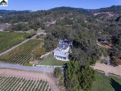 Sonoma County Single Family Home For Sale: 6687 Sonoma Highway