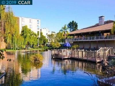 Walnut Creek Condo/Townhouse For Sale: 360 N Civic Dr #503