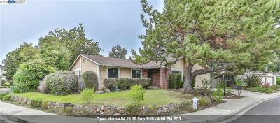 Walnut Creek Single Family Home For Sale: 3142 Stinson Cir