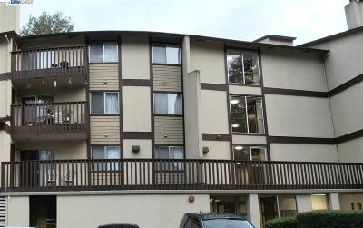 Hayward Rental Price Change: 1775 Panda Way #345