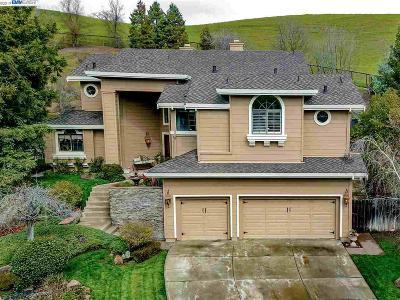 Danville Single Family Home For Sale: 40 Glenhill Ct