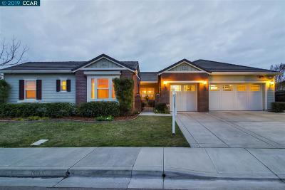 San Ramon Single Family Home For Sale: 385 Bridle Ct