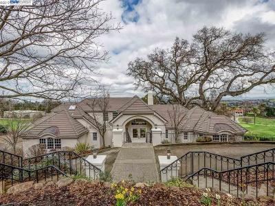 Pleasanton Single Family Home For Sale: 869 Castlewood Pl