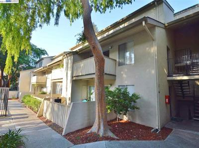 Walnut Creek Rental For Rent: 2708 Oak Rd #47
