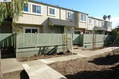 Fremont Condo/Townhouse For Sale: 3833 Meeks Ter