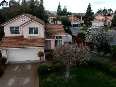 Antioch Single Family Home For Sale: 4320 Elk Dr