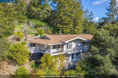 Orinda Single Family Home For Sale: 16 Dos Posos