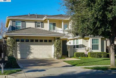 Pleasanton Single Family Home New: 1124 Donahue Dr
