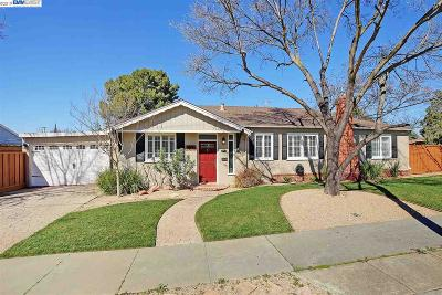 Livermore Single Family Home For Sale: 3990 Princeton Way