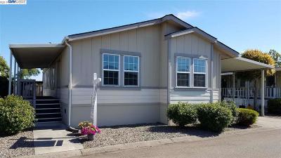 Hayward Mobile Home New: 1378 Buckingham Way