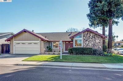 Pleasanton Single Family Home New: 4654 Canary Dr