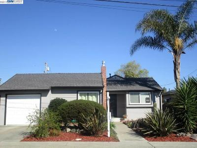 Castro Valley Single Family Home New: 21028 San Miguel Ave