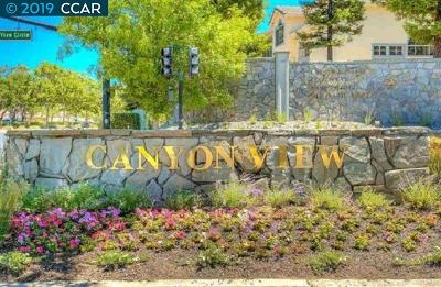 San Ramon Condo/Townhouse New: 384 Eastridge Dr