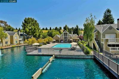 San Ramon Condo/Townhouse New: 225 Reflections Drive #23