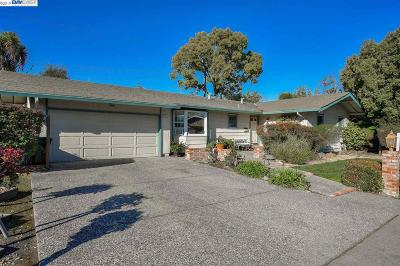Fremont Single Family Home New: 40923 Durillo Dr