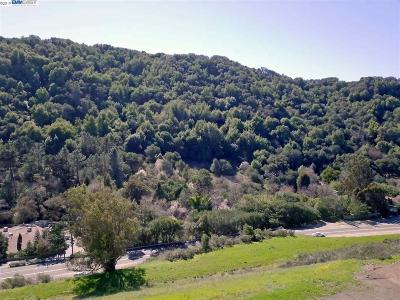 Castro Valley Residential Lots & Land For Sale: 6037 E Castro Valley Blvd