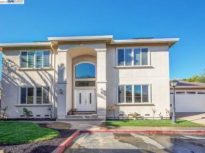 Castro Valley Single Family Home New: 3939 Alexia Pl