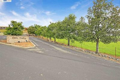 Sunol Residential Lots & Land For Sale: 3333 Little Valley Road