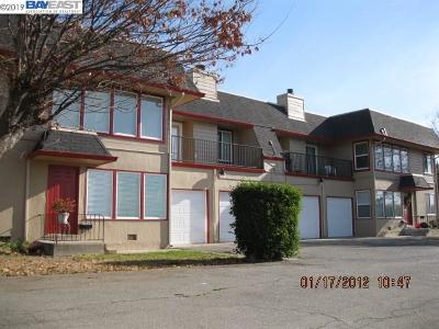 San Leandro Multi Family Home New: 16232 Lindview Dr