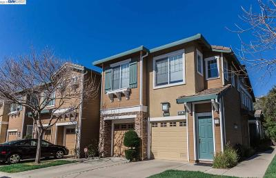 Castro Valley Condo/Townhouse New: 3639 Pinon Canyon Ct