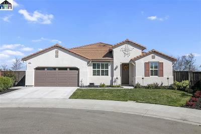 Oakley Single Family Home For Sale: 852 Pathfinder Ct