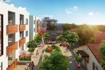 Santa Clara Condo/Townhouse New: 1850 El Camino Real Unit 207 #207