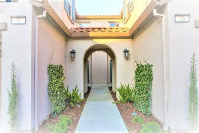 Mountain House Condo/Townhouse New: 73 W Luna Loca Ln