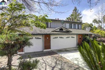 Fremont Single Family Home New: 43063 Luzon Drive
