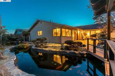 Livermore Single Family Home New: 1084 Geneva St