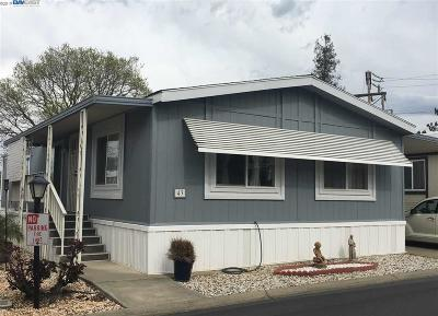 Pleasanton Mobile Home New: 3231 Vineyard Ave.
