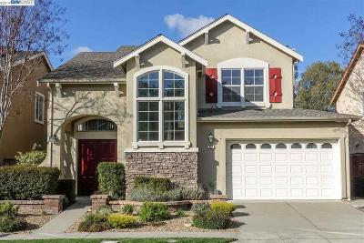 Pleasanton CA Single Family Home New: $1,578,000