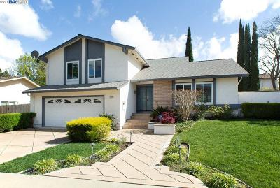Pleasanton CA Single Family Home New: $1,195,000