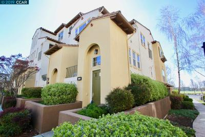 Dublin Condo/Townhouse New: 4115 Clarinbridge Cir