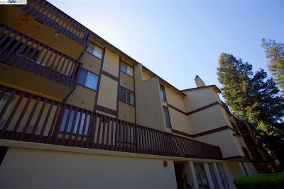 Hayward Condo/Townhouse For Sale: 1775 Panda Way #112