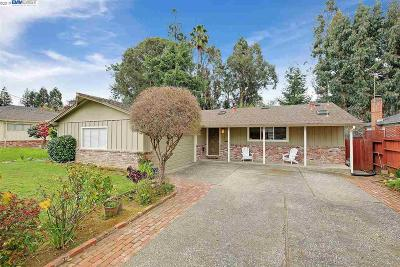 Hayward Single Family Home New: 2835 Sunnybank Ln