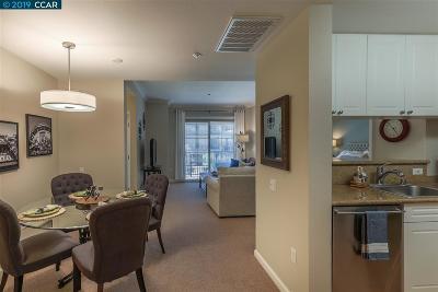 Walnut Creek Rental For Rent: 1315 Alma Ave #252