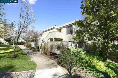 Walnut Creek CA Condo/Townhouse New: $448,000