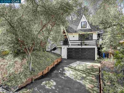 Orinda Single Family Home New: 129 Spring Rd