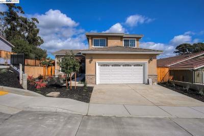 Castro Valley Single Family Home For Sale: 4607 Edwards Ln