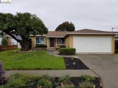 Alameda County Single Family Home New: 36074 Newark Blvd