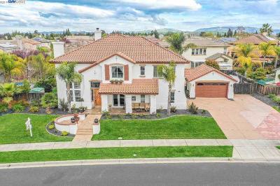 Livermore Single Family Home For Sale: 1576 Prima Dr