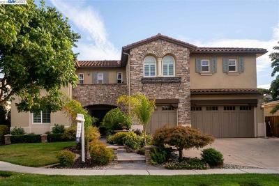 Pleasanton Single Family Home For Sale: 3602 Fieldview Ct