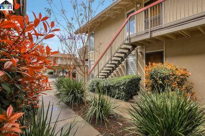 Pleasant Hill Condo/Townhouse For Sale: 59 Massolo Dr #B
