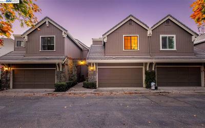 Danville Condo/Townhouse For Sale: 559 Silver Oak Ln
