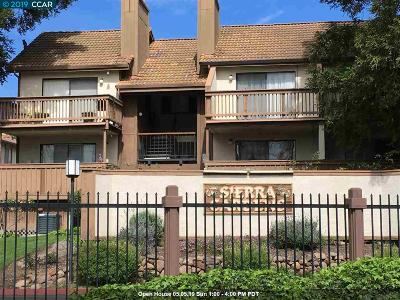 Concord Condo/Townhouse For Sale: 2055 Sierra Rd #23