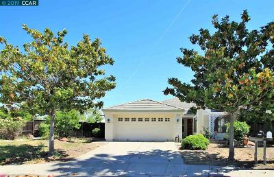 Antioch Single Family Home For Sale: 2413 Brittany Ct