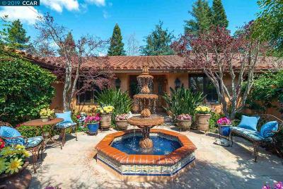 Danville Single Family Home For Sale: 37 Baja Loma Ct