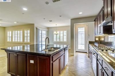 Mountain House Single Family Home For Sale: 663 N Santa Inez Dr